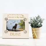 Dog Memorial Personalised Photo Frame